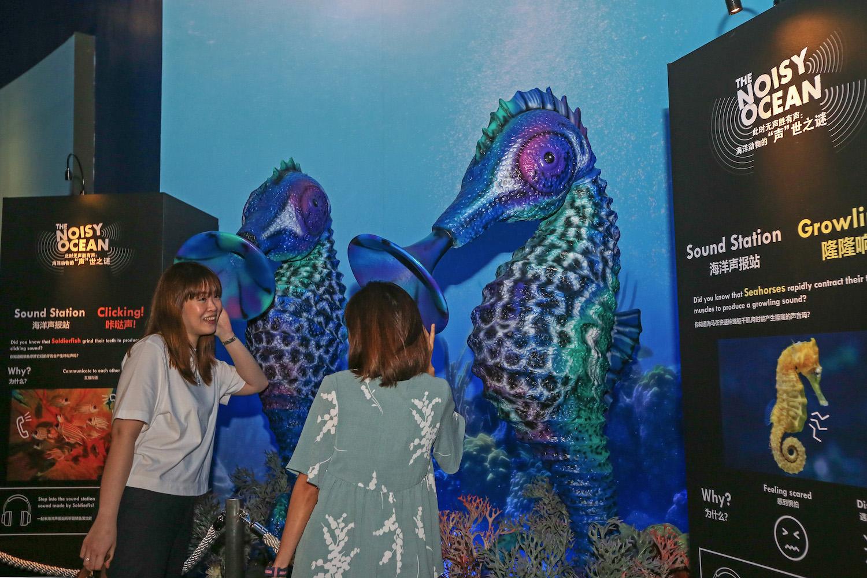 S.E.A. Aquarium Ocean Fest: Sound Station