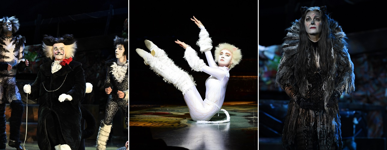 Cats The Musical Returns To Create More Memories In Singapore